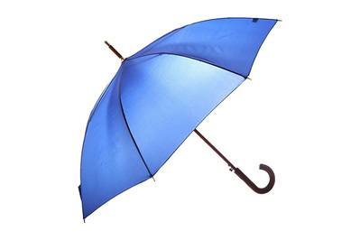 The Best Umbrella | The Wirecutter